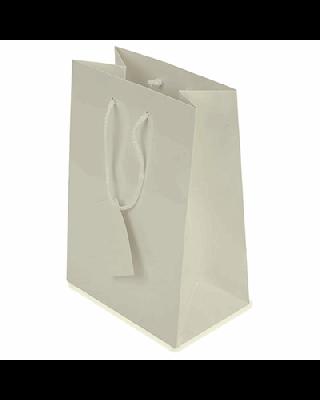 BOLSA PRESENTE PLASTIFICADA